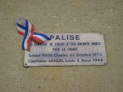 Palise